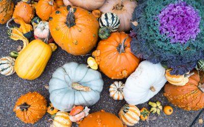 Las ventajas de una boda en otoño